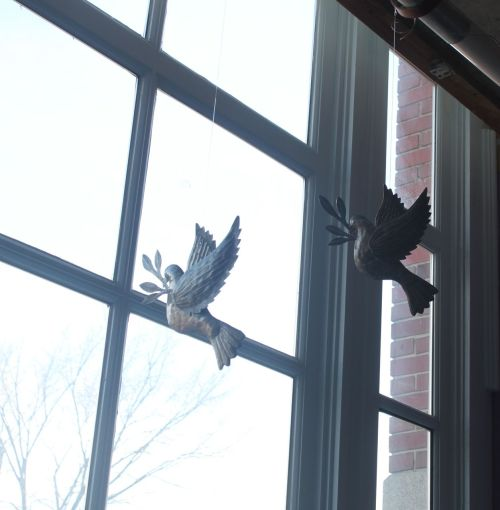 doves in window